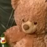 Illustration du profil de Teddy